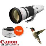 Canon EF 600mm f4 Mk II Special-02