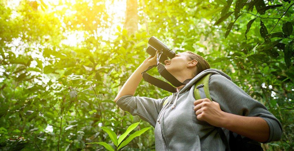 Tips to remember when buying birding binoculars