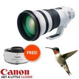 Canon 400mm f2.8 MK III