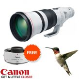 Canon EF 600mm f4 Mk III Special