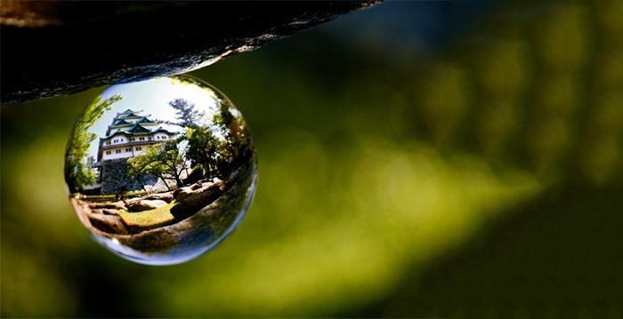 7 Tips for Doing Lensball Refraction Photography