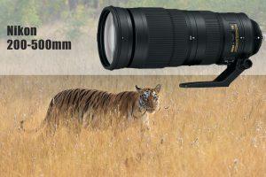 Nikon 200-500mm f5.6 Versatile Wildlife Lens Cameraland Sandton