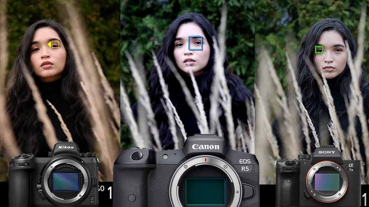 Nikon-Z6-II-vs-Canon-R5-vs-Sony-a7-III-Autofocus-Comparison